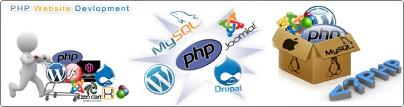PHP Website Development Company in Delhi